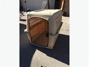Medium sized dog kennel east regina regina for Dog kennels for medium sized dogs