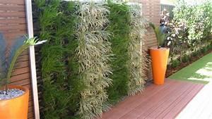 Bewässerungssystem Für Zimmerpflanzen : 50 besten zimmerpflanzen ideen bilder auf pinterest schritt f r schritt anleitung ~ Markanthonyermac.com Haus und Dekorationen