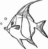 Coloring Fish Bubbles Angel Making Sky sketch template