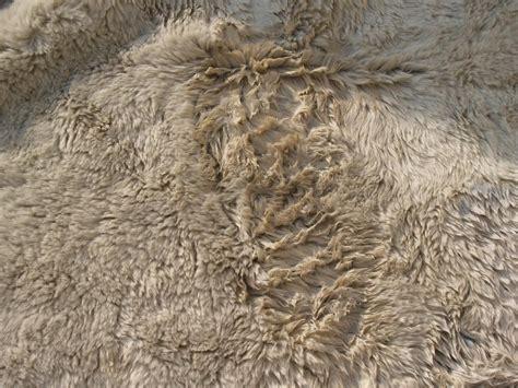 sheep skin rug rug master sheepskin rug cleaning
