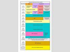 Un vistazo a la Cartilla Nacional de Vacunación
