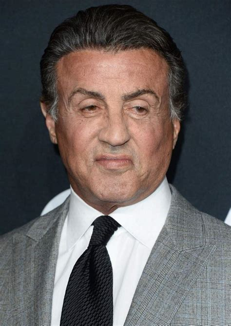 Sylvester Stallone sylvester stallone age height  fast facts heavycom 780 x 1102 · jpeg