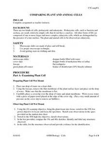 images  compare  animals worksheet