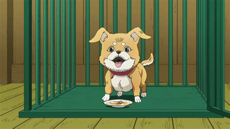 Lift your spirits with funny jokes, trending memes, entertaining gifs, inspiring stories, viral videos, and so much more. Luckiest dog in Jojo's history   JoJo's Bizarre Adventure ...