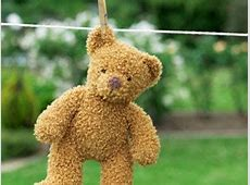 Tips To Wash & Maintain Teddy Bear Boldskycom