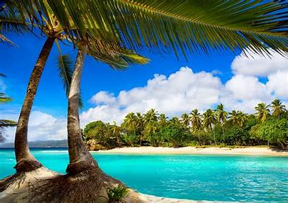 Tropical Ocean Paradise Vacation Sea Palms Wallpapers