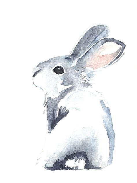 Rabbit Drawing 25 Best Ideas About Rabbit Drawing On Pinterest Rabbit