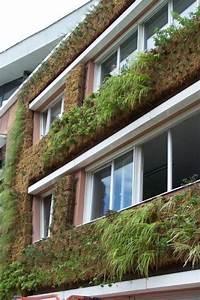 Mur Végétal Extérieur : mur v g tal ext rieur installation de murs v g taux en ~ Premium-room.com Idées de Décoration