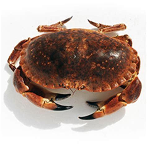 Cuisson Dormeur by Les Crustac 233 S Crabe Tourteau Hommard Langouste