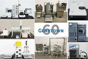 Genetown 60 Online Lab Auction
