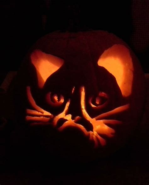 Grumpy Cat Pumpkin Carving Stencils Halloween