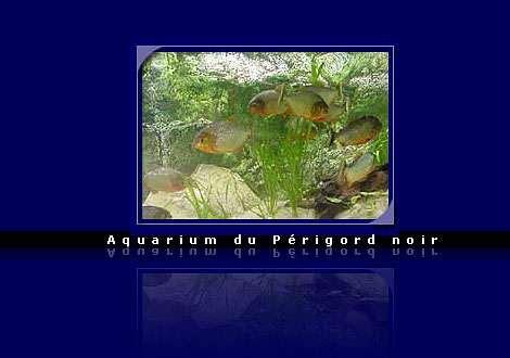 planete aquarium plan de cagne escapade aquarium du p 233 rigord noir
