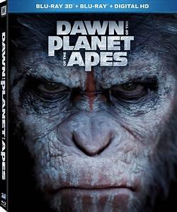 Dual Audio Movies(English+Urdu/Hindi) - Downloads Section ...