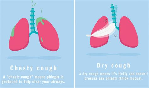 Lung Cancer Symptoms Persistent Cough Could Be A Sign Of. Lapss Signs Of Stroke. Character Signs. Cool Restaurant Signs Of Stroke. Lie Signs. Fire Protection Signs. Hindi Signs Of Stroke. Nonfiction Signs Of Stroke. Exstinguisher Signs Of Stroke