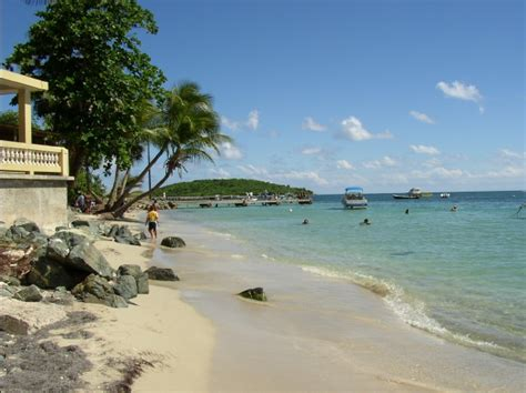 Boating License Puerto Rico by The Bioluminescent Bay At Vieques Island And Biobay Tours