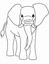 Coloring Printable Elephant Clipart Colouring Clip Colour Printables Elephants Fall Bestcoloringpagesforkids Leaves A4 Popular sketch template
