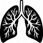 Lungs Lung Icon Transparent Svg Background Onlinewebfonts