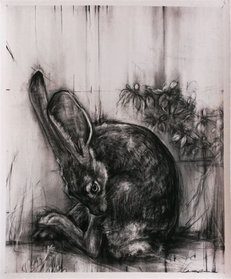 april coppini charcoal   pinterest rabbit art