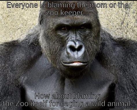 Funny Harambe Memes - if harambe could talk quickmeme