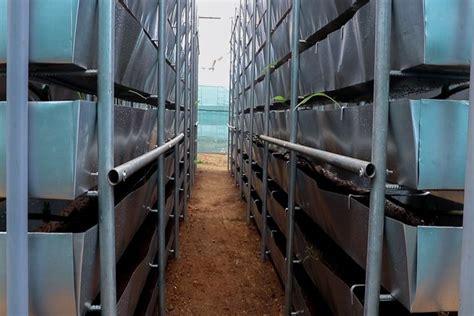 vertical farming  india horizontal space  running