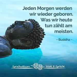 Buddha Sprüche Bilder : jeden morgen werden wir wieder geboren was wir heute tun z hlt am meisten buddha zitat ~ Orissabook.com Haus und Dekorationen