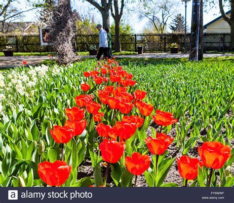Britzer Garten Berlin Germany by Britzer Garten Neuk 246 Lln Berlin Germany 21st April 2016