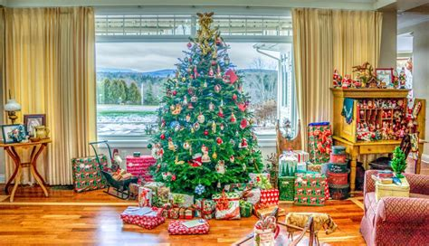 images indoor holiday christmas tree interior
