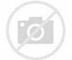 movie4k Venom 2018 HD Full Watch Online Free - Diana Wright