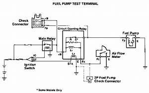 Fuel Pump Test Terminals