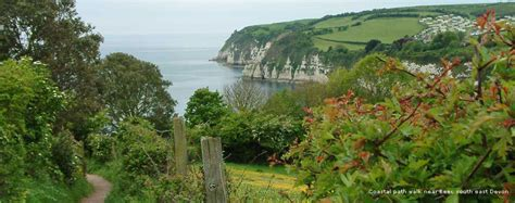 Pet Friendly Holiday Cottages In Devon