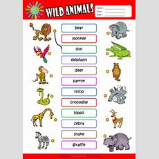 List Of Synonyms And Antonyms Of The Word Esl Animals