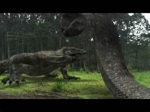 Image Gallery komodo dragon vs snake