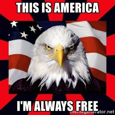 America Meme Eagle - this is america i m always free bald eagle meme generator