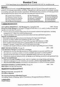 Resume Sample For Banking Professionals Countrywide Resume Countrywide Sample Resume Countrywide