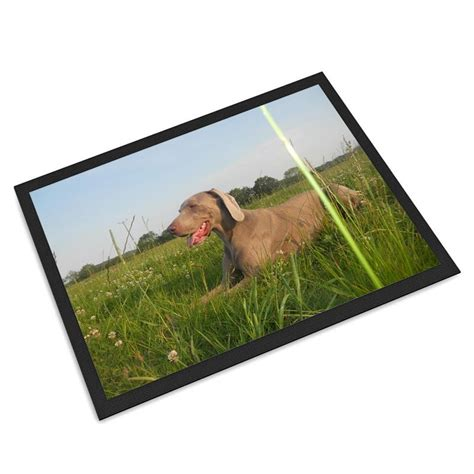 Pet Doormat by Pet Mats Personalised With Photos And Text On Mat For Cats