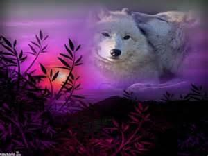 Animal Purple Mountains