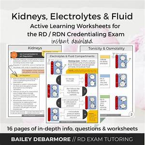 Kidneys Electrolyte Fluid Balance Study Guide For The Rd