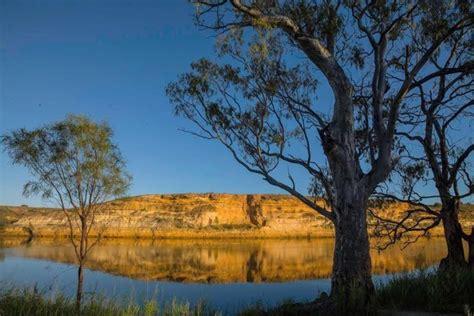wilderness  nature photographer steve parish rates