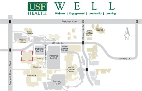 building information usf health