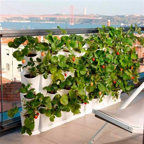 jardin vertical au balcon am 233 nager sa oasis de verdure