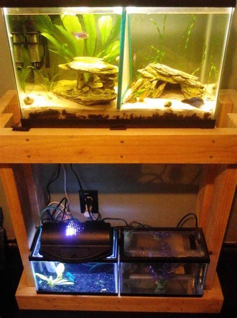 gallon long aquarium stand woodworking projects plans