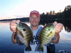 How to Catch Bluegill - Tips for Fishing for Bluegill