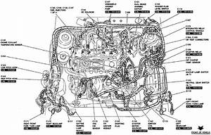 Engine Diagram For A 3 0 V6 2004 Ford Escape