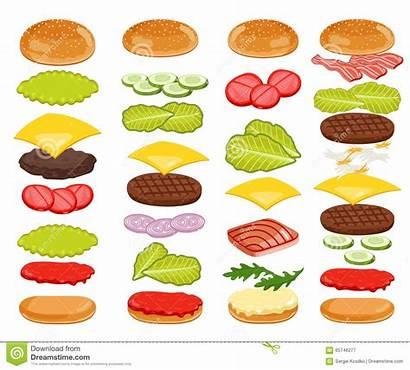 Burger Ingredients Hamburger Hamburguesa Ingredientes Bun Fondo