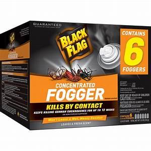 Shop BLACK FLAG 7 5-oz Black Flag Concentrated Fogger at