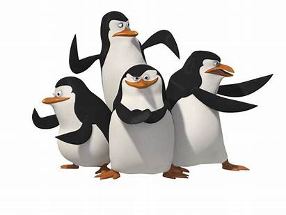 Penguins Madagascar Looney Tunes Purepng Character