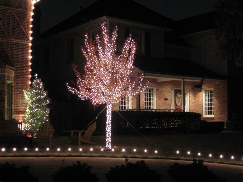 how to wrap christmas lights how to wrap an oak tree in christmas lights mouthtoears com