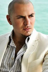 How many albums of Pitbull are there? | How Many Are There  Pitbull