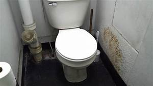 Bathroom tour shanty mansfield toilet youtube for Commodes bathroom tour