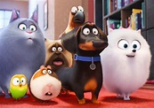 Who Voices Characters in The Secret Life of Pets ...